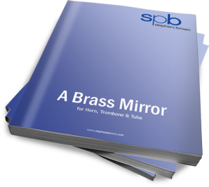 Psalm 143 - A Brass Mirror by Stephen P Brown