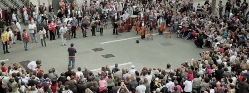 Stephen P Brown loves Orchestra Flash Mobs